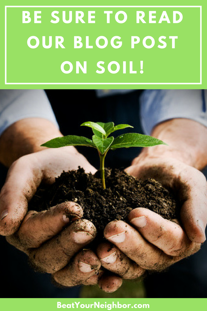 blog-soil.png